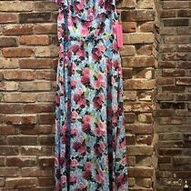 Nwt Womens 12 Betsey Johnson Blue Spring Floral Maxi Dress Pink Ruffle Neck Long Photo