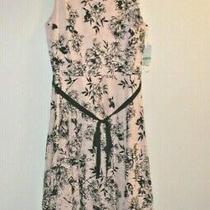 Nwt  Womens Dress Sz 8 Danny and Nicole Lace Blush/blk Original 75.00 Photo