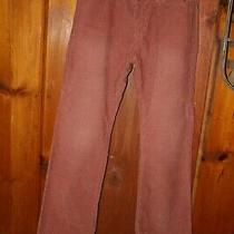Nwt Womens Gap Courdory Flare Pink Pants Size 6 Low Rise Photo
