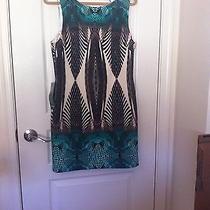 Nwtbebe Dress Size Large Photo
