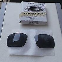 Oakley Oil Drum Grey Replacement Lens Kit Original Box Photo