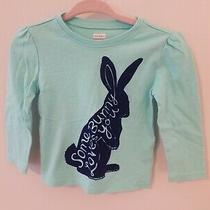 Old Navy Baby Girl 12-18 Month Easter Somebunny Loves You Shirt  Photo