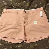 Old Navy Blush Pink Shorts 16 Nwt Photo