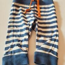 Old Navy Brand Boys Size 3-6 Month Pants (Blue Stripes) Photo
