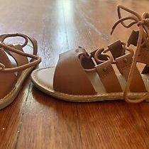 Old Navy Girls Chestnut Gladiator Sandals Zip Back S 12 Adorable and Pristine Photo