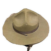 Olive Green Forest Ranger Drill Sergeant State Trooper Halloween Costume Hat Photo