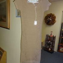 One Size Fits All Fitted Stretchable Dress by Primecut  Photo