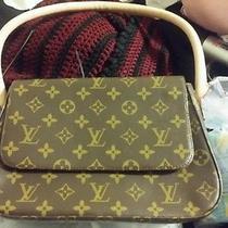 Original  Louis Vuitton Purse Photo