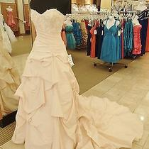P152 Sottero & Midgley Couture Msjsm104 Blush 1599 Wedding Gown Dress Photo