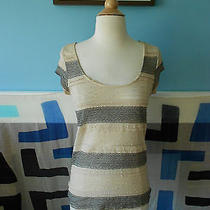 Painted Threads Urban Outfitters Lace Stripe Tee / Size Small Photo