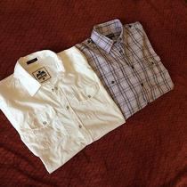 Pair of Express Shirts Fitted Medium Photo