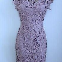 Paper Dolls Ladies Blush Pink Crochet Lace Midi Dress Size 8 Lined Wedding Party Photo