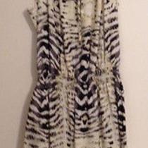 Parker Print Summer Dress Photo