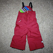 Patagonia Baby Girls Snow Daze Bib Nwt Size 12m Magenta Photo