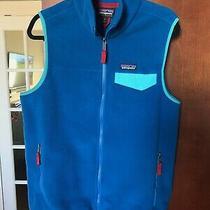 Patagonia Lightweight Synchilla Snap-T Fleece Vest Men's Blue M 2016 Photo