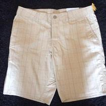 Patagonia Men's Cienega Shorts 36