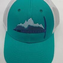 Patagonia Mens Day to Day Piolet Lopro Trucker Cap/hat 38004 Emerald Photo