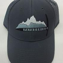 Patagonia Mens Day to Day Piolet Lopro Trucker Cap/hat 38004 Forge Grey Photo