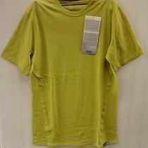 Patagonia Mens Merino 1 Silkweight T Shirt 36351 Folios Green Large Photo