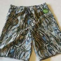 Patagonia Mens Planing Board Shorts  Size 28  New Swimming Swim Shots Beach  Photo