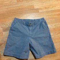 Patagonia Mens Shorts Photo