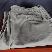Patagonia Organic Cotton Cotton Pants Olive Solid 34x30 Euc Photo