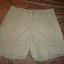 Patagonia Organic Cotton  Shorts Light Weight  Cotton 38 Waist Photo