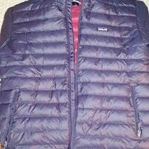 Patagonia Puffer Jacket Photo