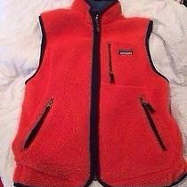 Patagonia Retro X Men's Vest Photo