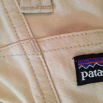 Patagonia Shorts Photo