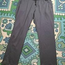 Patagonia Sweatpants Sz Xl Photo
