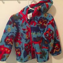 Patagonia Toddler Jacket (3yr) Photo