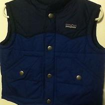 Patagonia Toddler Puffer Vest Photo