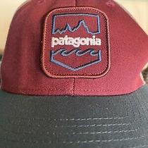 Patagonia Trucker Hat Cap  Photo