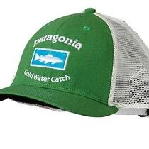 Patagonia Trucker Hat Green Cold Water Catch Photo