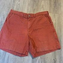 Patagonia Vintage Red Stand Up Shorts Organic Cotton Size 36 Inseam 6.75
