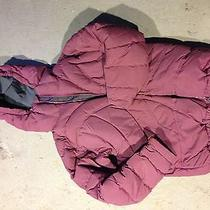 Patagonia Womens Ski Jacket Photo