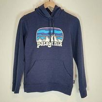 Patagonia Xs Hoodie Sweatshirt Fitz Roy Far Out Ahnya Stone Blue Women Photo