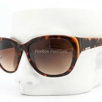 Paul Frank Sugarette 163 Sunglasses Lava Tortoise on Brown  Photo