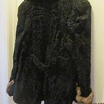 Persian Lamb Coat Photo