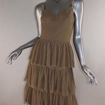 Philosophy Di Alberta Ferretti Dress Sz 10 Light Brown Lace Mesh Corset Photo