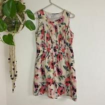 Pink and Blush Floral Madewell Sundress Sheer Womens Size 2 Photo