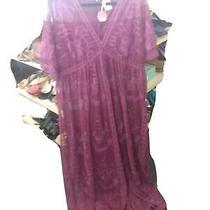 Pink Blush 2x Lace Maxi Dress Purple  Photo