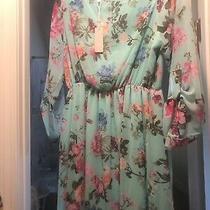 Pink Blush Maternity Dress Nwt Photo