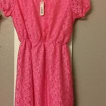 Pink Blush Maternity Lace Dress Nwt Cute Cute Cute Photo