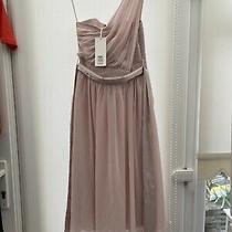 Pink Blush Showcase Petite Dress Size 8 Bnwt Photo