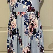 Pink Blush Sleeveless Maternity Dress Size Small Nwt Photo