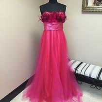 Pink by Blush Prom Dress W/feather Accents Sz 12 Photo