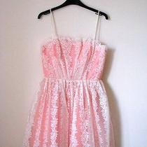 Pink Lace Top Shop Petite Prom Bridesmaid Dress Petite Size 4 Photo