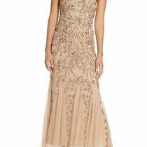Pisarro Nights Sleeveless v Neck Embellished Mesh Gown Sz 4 Blush Photo